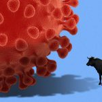 Financial markets in red of the Coronavirus